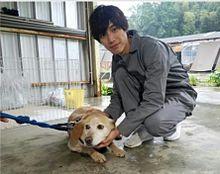志村どうぶつ園   捨て犬ゼロ部 新入部員 プリ画像