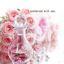 あなたのとりこの画像(香水に関連した画像)