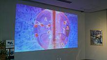 アクアテラス 錦ヶ丘の画像(ザ・テラスに関連した画像)