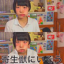 Yoshinoの画像(プリ画像)
