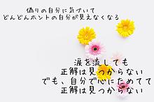 No titleの画像(お花に関連した画像)