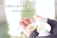 YUI/Understandの画像(プリ画像)