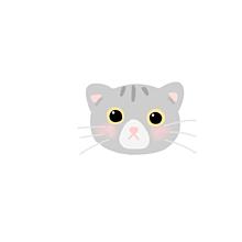 ネコの画像(ゆるいに関連した画像)