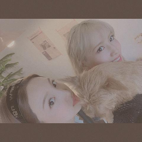 twiceナヨン&モモ&Boo❤️の画像(プリ画像)