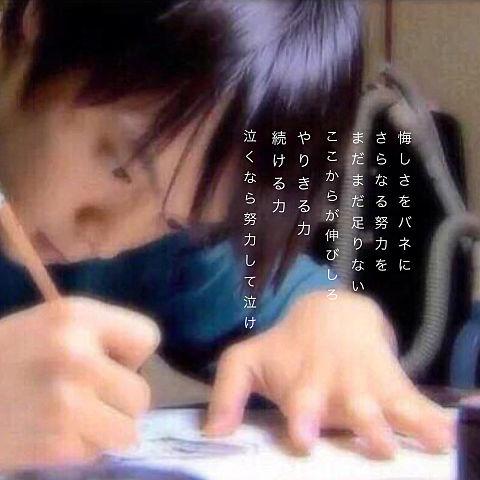 窪田正孝 勉強の画像(プリ画像)