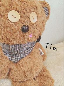 Timちゃんの画像(Timに関連した画像)