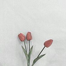 🌷の画像(おしゃれ/オシャレ/お洒落に関連した画像)