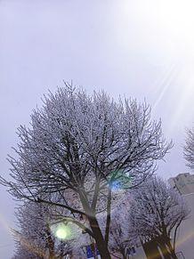 冬の空 プリ画像