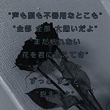 ドライフラワーの画像(#恋愛に関連した画像)