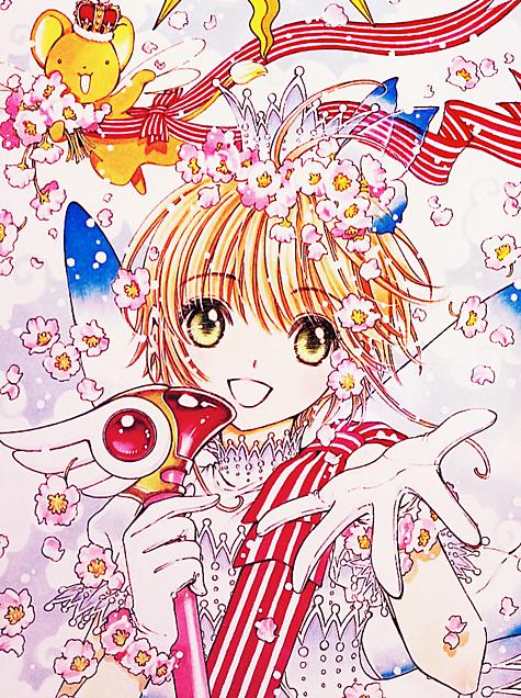 桜、舞い散る。の画像(プリ画像)