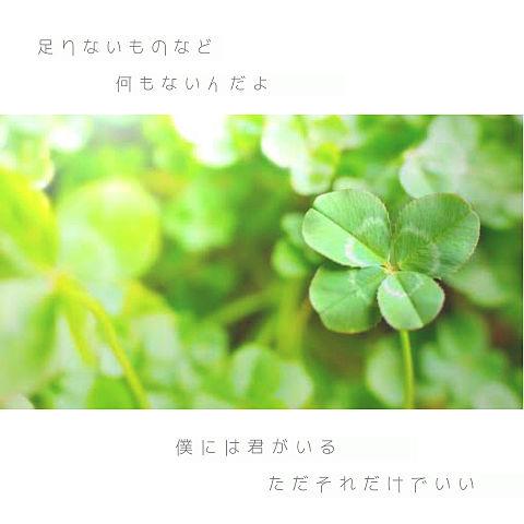 菅田将暉⋆*の画像(プリ画像)