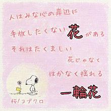 桜/コブクロ プリ画像