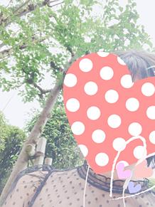 友達と公園デートの画像(シースルーに関連した画像)