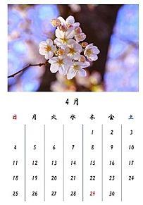 カレンダー プリ画像