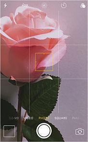 バラ 保存はポチ☺︎の画像(IKEAに関連した画像)