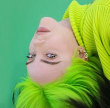 Billie Eilishの画像(歌手に関連した画像)