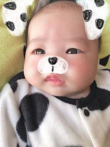 赤ちゃん👶の画像(赤ちゃんに関連した画像)