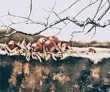壁に飾られる風景写真📷️ プリ画像