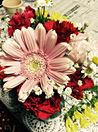 お花❁ プリ画像