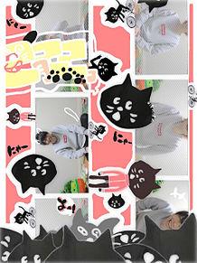 2月22日\猫の日/の画像(プリ画像)