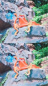 ファインディングドリーの画像(ファインディング ドリーに関連した画像)