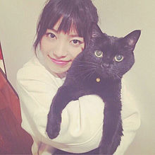 no titleの画像(miwa 猫に関連した画像)