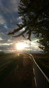 差し込む太陽の画像(太陽に関連した画像)