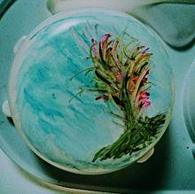 らくがき「幻想的な木」の画像(雪見だいふくに関連した画像)