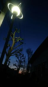 街灯 街路樹 シルエットの画像(街灯に関連した画像)
