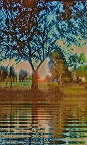 夜明け プリ画像
