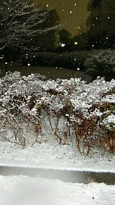 One day (雪) プリ画像