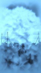 紫陽花 公園 シルエットの画像(幻想的に関連した画像)