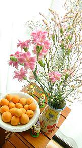 花と杏子の果実の画像(杏子に関連した画像)