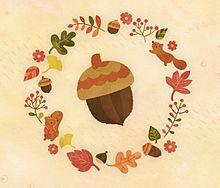 どんぐりの画像(Autumnに関連した画像)
