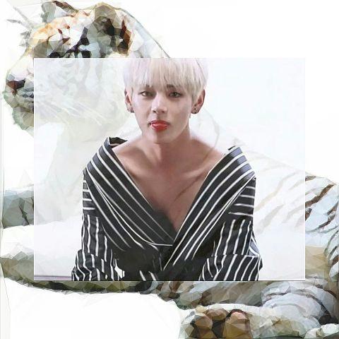 black horse 🐴  white tiger 🐯の画像(プリ画像)