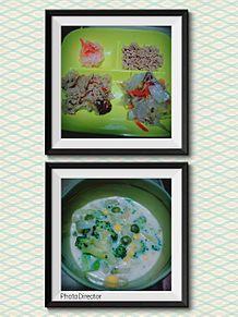 dietの画像(食事制限に関連した画像)
