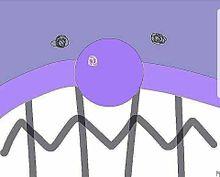 バイキンマンの画像(バイキンに関連した画像)