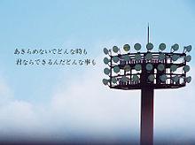 高校野球の画像(サンボマスターに関連した画像)