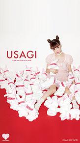 USAGIの画像(usagiに関連した画像)