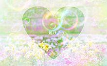 しゃぼん玉の画像(しゃぼん玉に関連した画像)