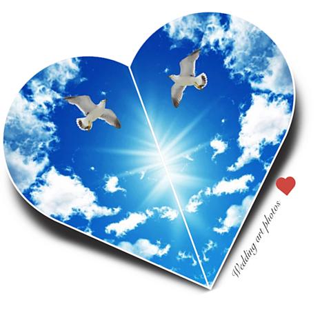 青空に飛ぶ鳥が描くハートの画像(プリ画像)