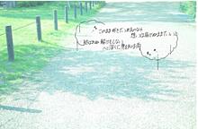 コブクロ 保存で画質⤴の画像(プリ画像)