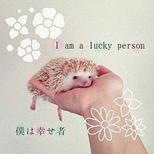I am a lucky personの画像(プリ画像)