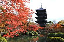 秋の京都 美しい紅葉の画像(京都に関連した画像)