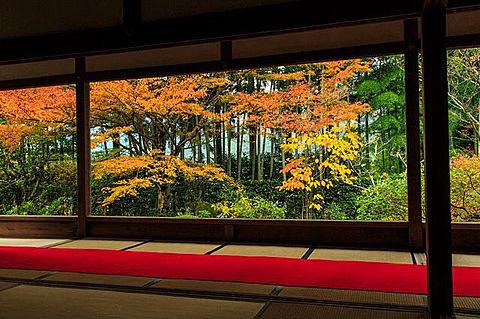 美しい京都の紅葉の名所 家庭画報の画像(プリ画像)