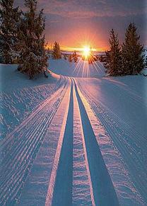 美しい雪景色の画像(プリ画像)