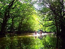 沖縄の風景 写真右下のハートを押してねの画像(沖縄に関連した画像)