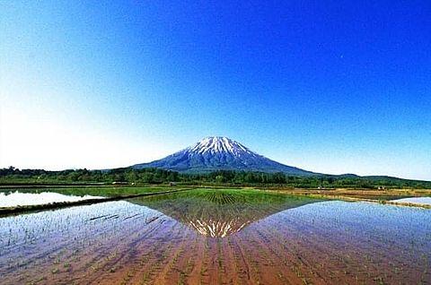 羊蹄山  北海道  写真右下のハートを押してねの画像 プリ画像