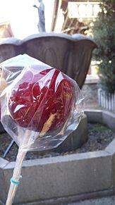 りんご飴!の画像(りんご飴に関連した画像)