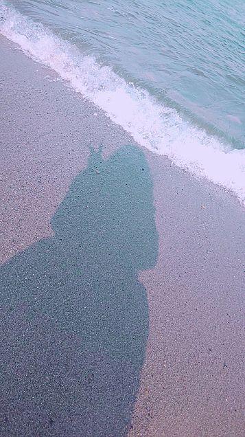 海🌊の画像(プリ画像)